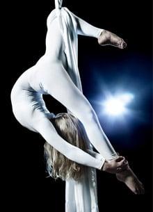 Circus acrobat, circus insurance