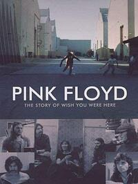 The Story of Wish You Were Here jacket