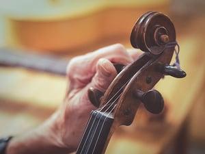 Violin's pegs